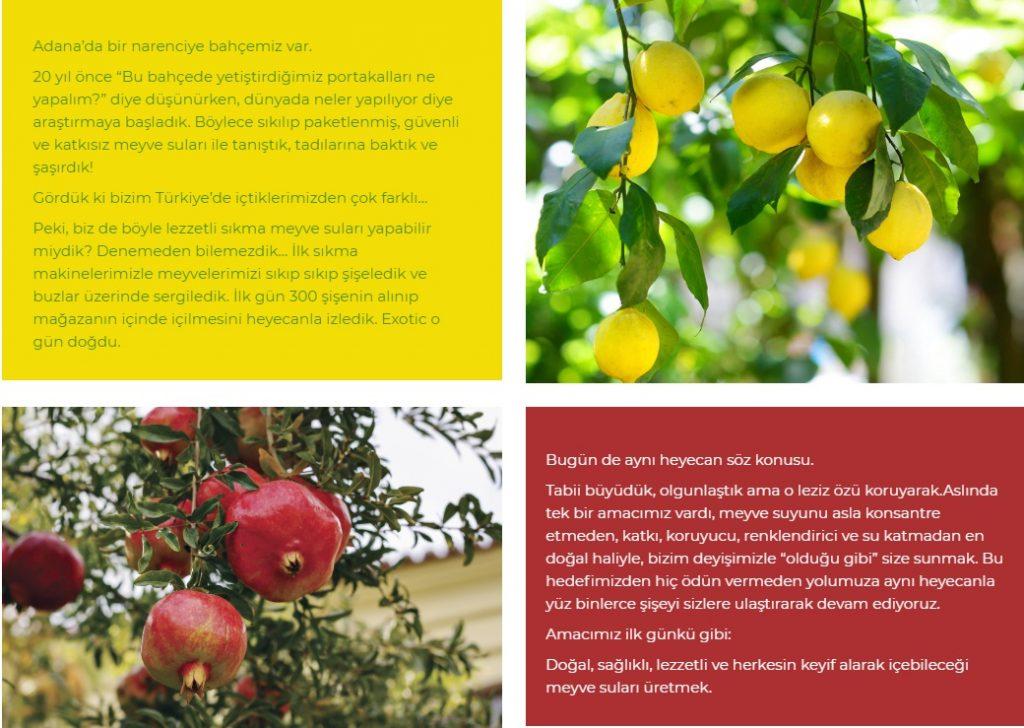 Geta tarım exotic meyve suyu