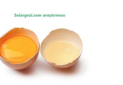 H-vitamini-olan-biotinin-yararları-neler-2