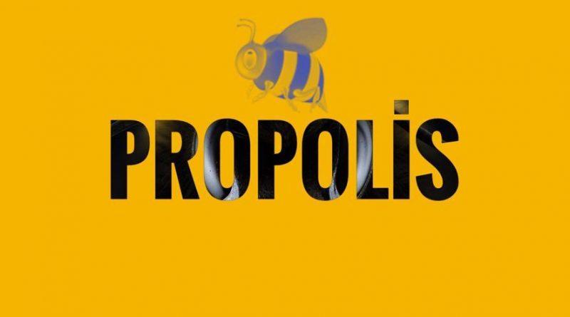 Propolis koronavirüs'ün hücre içine girmesini engelleyebilir mi?