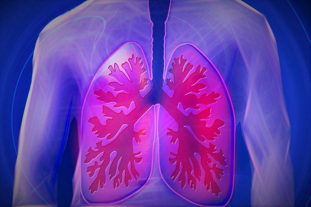 Propolis ve korona virüsün akciğerlere etkisi