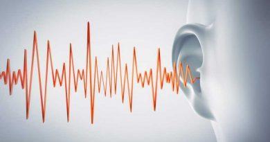 Kulak çınlaması Tinnitus Oto-313 Solargezi Blog Sağlık